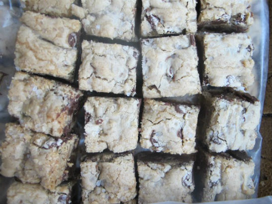 Fleur de Sel Chocolate Chip Blondies by Alexis Cambareri