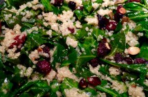 Seasonal Chef Maria Reina, Collard and Quinoa salad