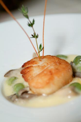 Pan Roasted Diver Scallop with Fava Bean Ragu and Oyster Mushroom
