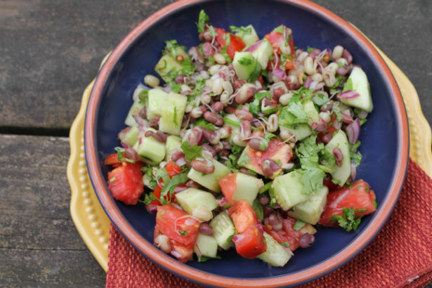 Cucumber, Tomato and Sprouted Adzuki Bean Salad