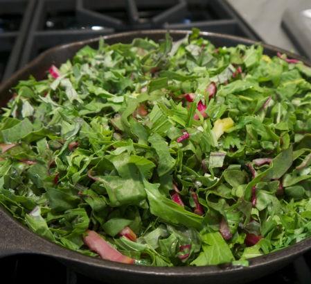 kale, chard and mizuna mix