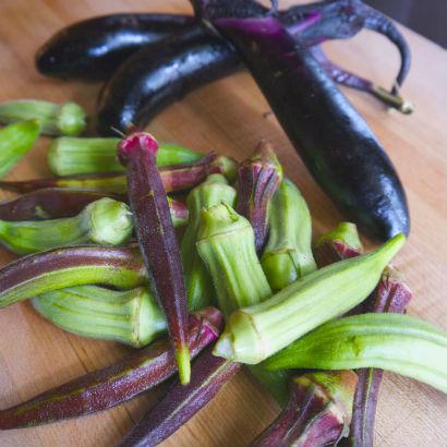 Okra and Japanese Eggplant