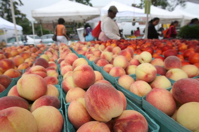 White Plains Farmers Market 08-25-10
