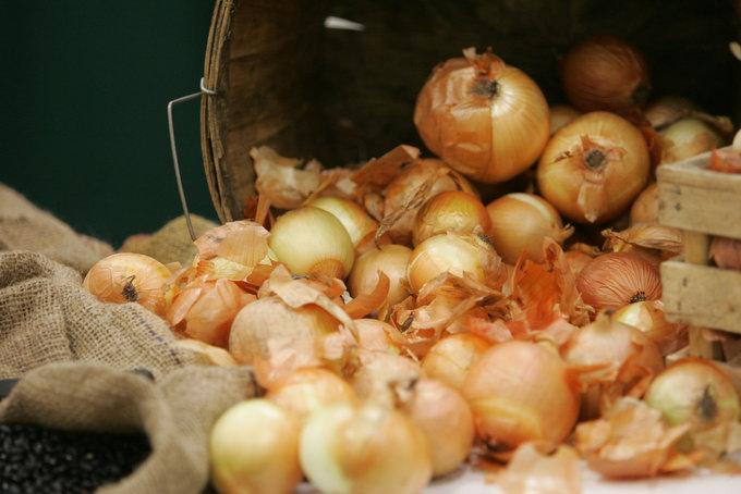 onions01