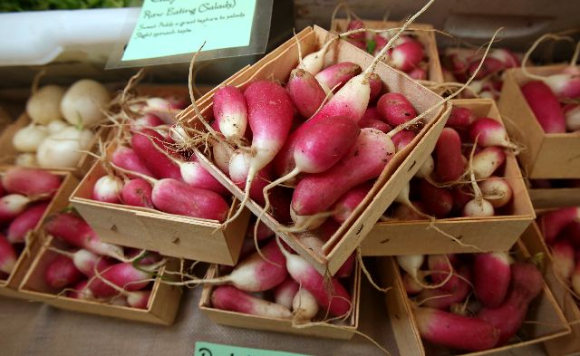 winter farmers markets in westchester, rockland and putnum